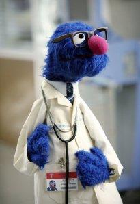 Doctor-Grover-grover-monster-20091698-343-500