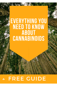 Everything you need to know about cannabinoids